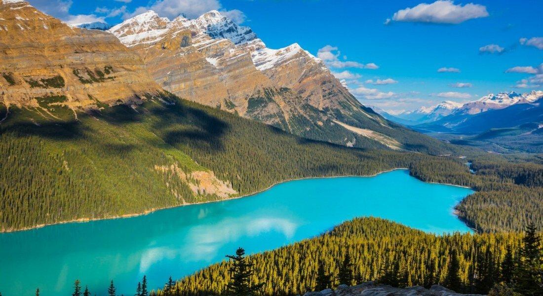 Le Lac Peyto, Parc national de Banff dans les Rocheuses canadiennes