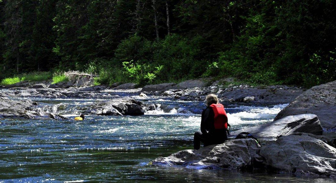 Rivière à saumons au Québec