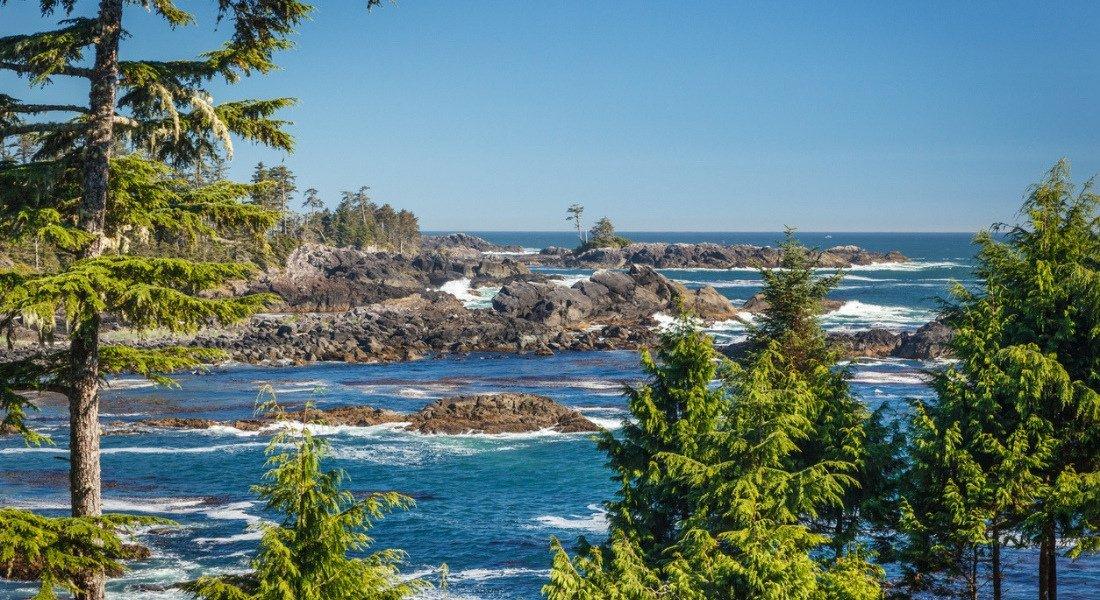 Pacific Rim Canada