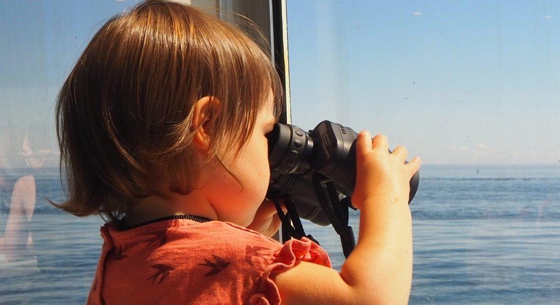 observation des baleines Tadoussac