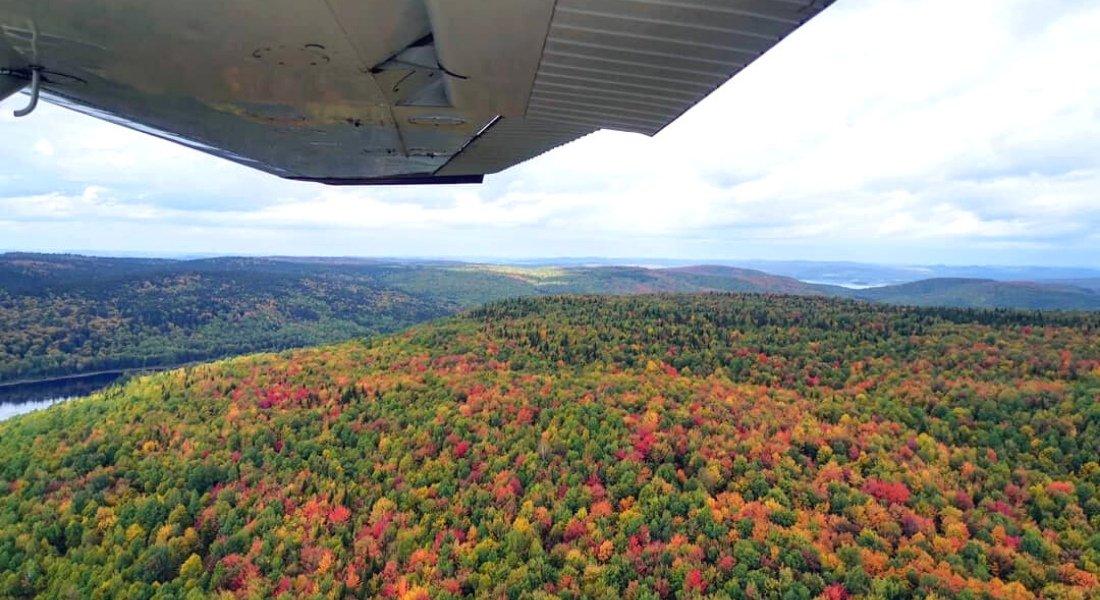 fall colors canada