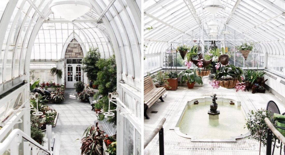 Intérieur de Westmount Greenhouse