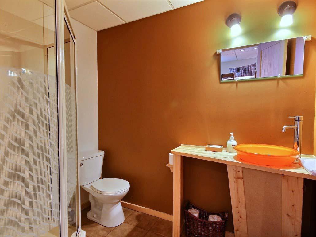 Salle de bain-4 Chalet Forestier