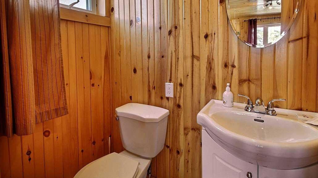 Salle d'eau Chalet Ours Noir