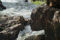 Le Parc des chutes Dorwin