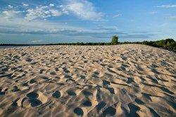 Sand Dunes, Sandbanks, ON