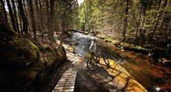 VTT Trails, Vallée Bras-du-Nord