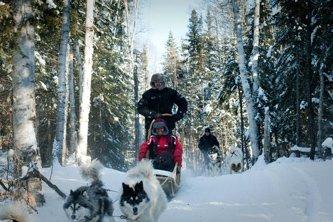 Excursion en traîneau à chiens