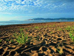 Barachois Beach, Carleton-sur-Mer