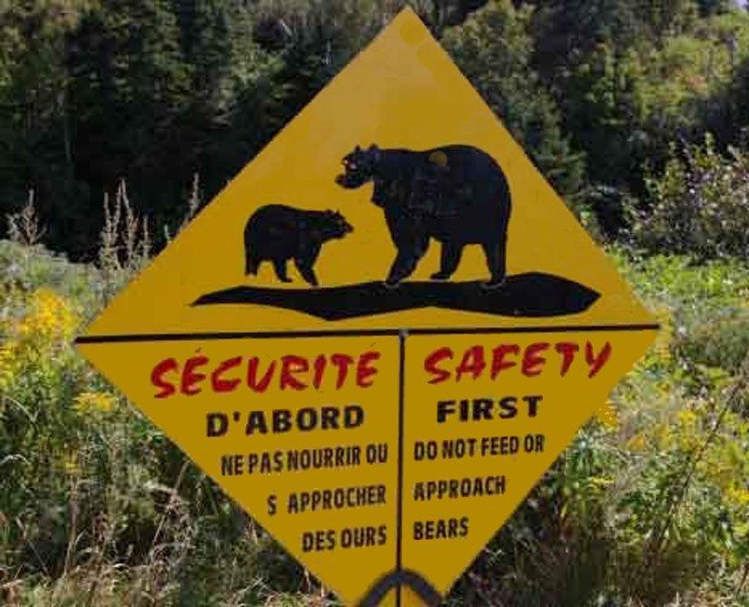 Parc Forillon - Attention aux ours