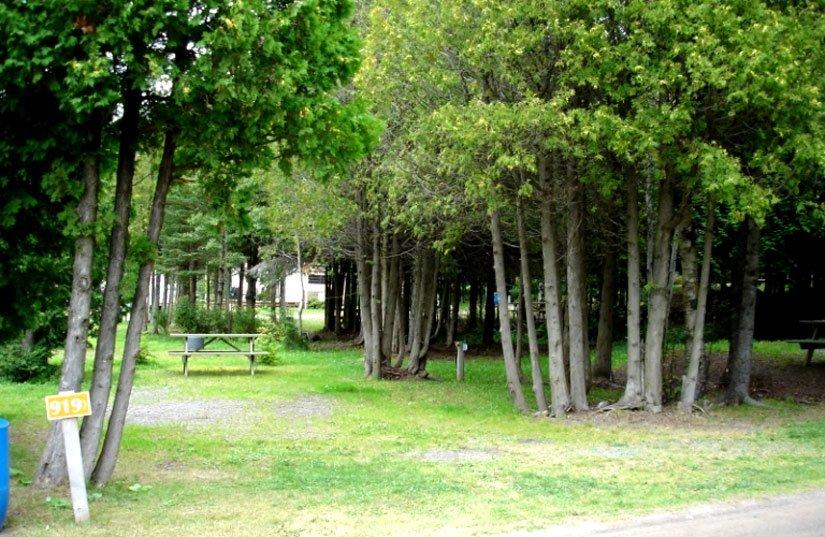 Camping Rivière Ouelle - Terrain typique