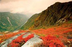 Parc national des Hautes-Gorges