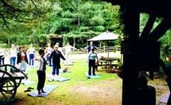 Jardins de l'Achillée Millefeuille - Yoga