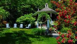 Maison sous les Pins - Jardin