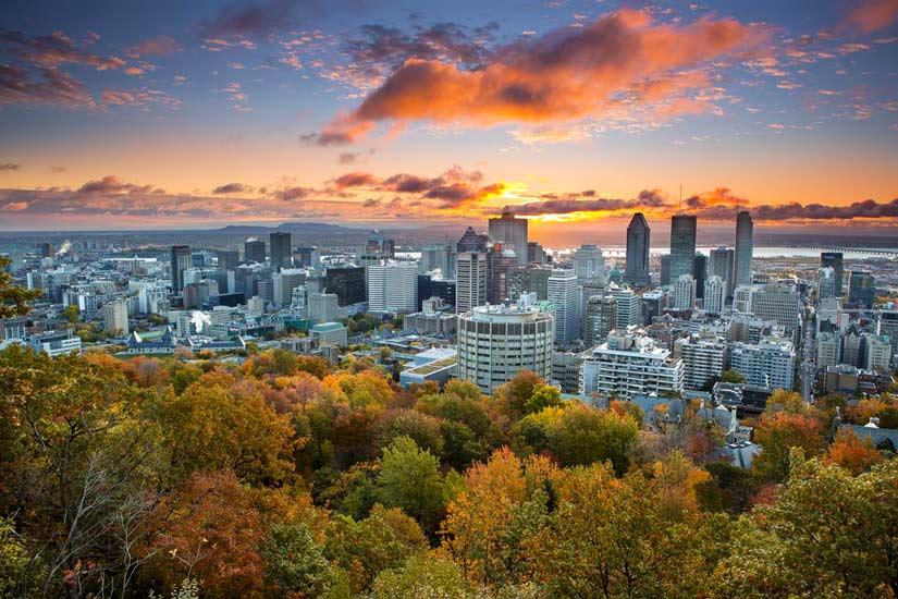 Les Suites Labelle - Centre-ville de Montréal