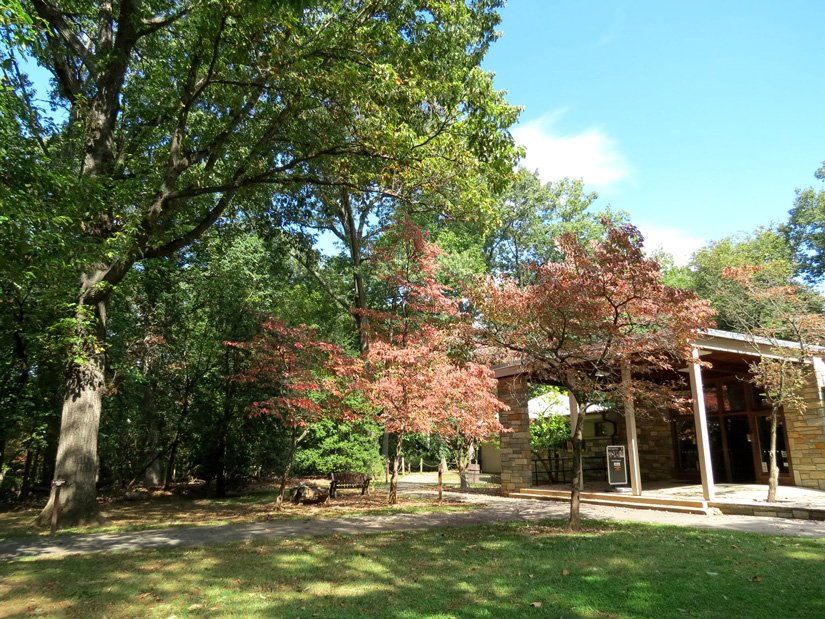 Omni Shoreham - À proximité, Rock Creek Park