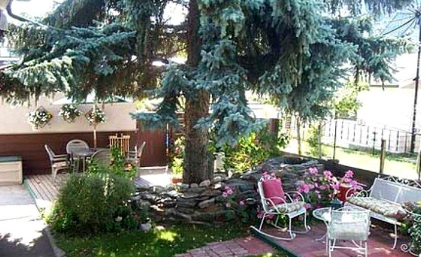 Gîte Grizzly's Den - Terrasse