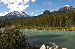 Rivière Bow - Alberta, Canada