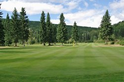Wells Gray Golf RV park - Golf