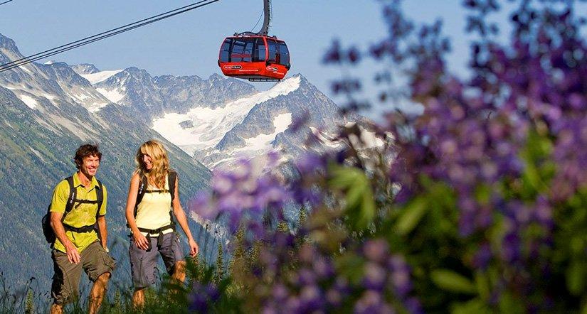 Hôtel Whistler Pinnacle - Escalade en montagne