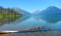 Fish Creek Campground - Parc national de Glacier