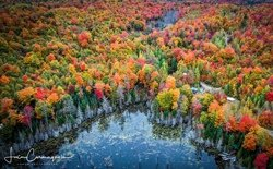 Vue aérienne de la forêt Laurentienne
