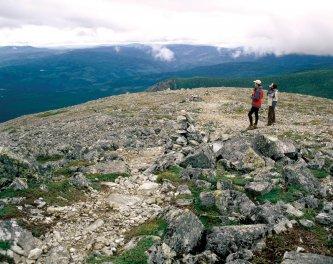 La toundra au sommet du Mont Jacques-Cartier