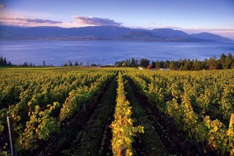 Cedar Creek Estate Winery, Kelowna