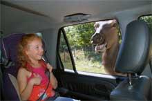 Parc animalier Omega