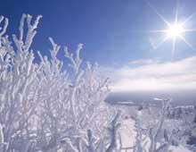 Paysage de la Mauricie en hiver