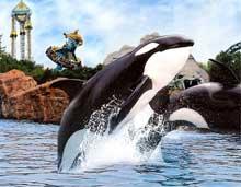 Le parc d'amusement Marineland à Niagara Falls