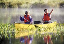 Canot dans le Parc de la Gatineau