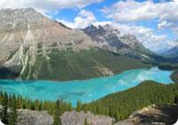 Lac Peyto Alberta