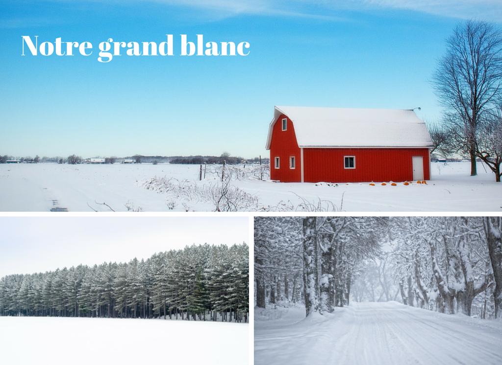 Pourquoi oser l'hiver au Canada? Pour notre grand blanc.